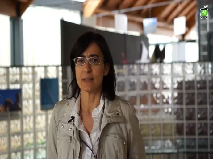 Quinto Convegno IDEM - M.L. Ponzone - Intervista